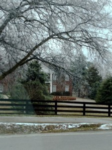 Frosted Trees and an Old House