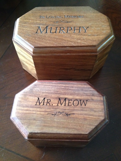 Mr. Meow and Murphy Memorials